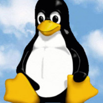 https://regmedia.co.uk/2015/06/18/linux_tux_cloud_648.jpg?x=648&y=348&crop=1